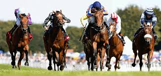 Photo of How to Place a Bet via Online Racing Betting Sites