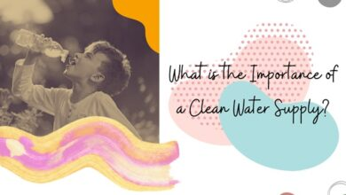 Photo of What is the Importance of a Clean Water Supply?