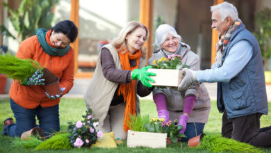 Photo of 4 Great Activities for Seniors